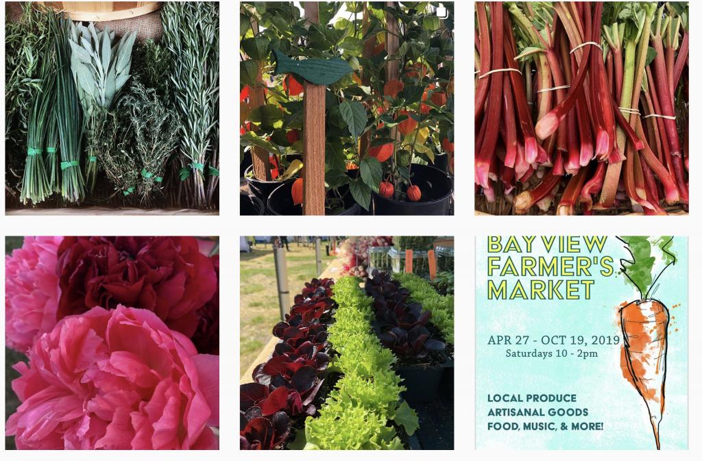 Bayview Farmer's Market